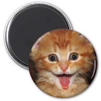 Funny Orange kitty face 6 Cm Round Magnet