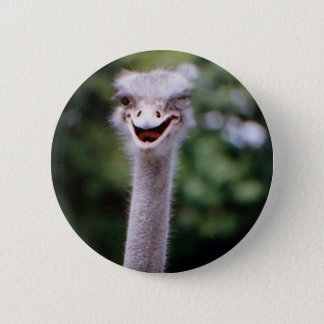 Funny Ostrich 6 Cm Round Badge