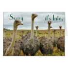 Funny Ostrich belated birthday card