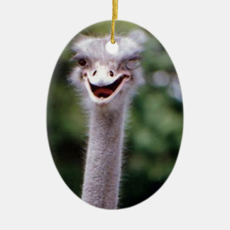 Funny Ostrich Christmas Ornament