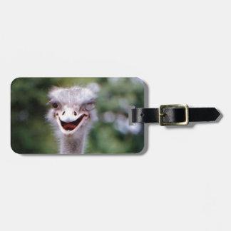 Funny Ostrich Luggage Tag