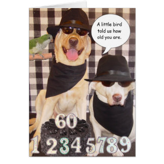 Funny Over the Hill Greeting Card