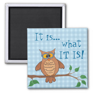 Funny Owl - It is what IT IS - Fridge Magnet