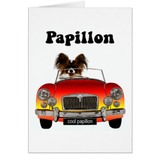 Funny Papillon Greeting Card