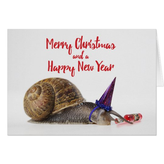 Funny Party Snail Christmas Card #2