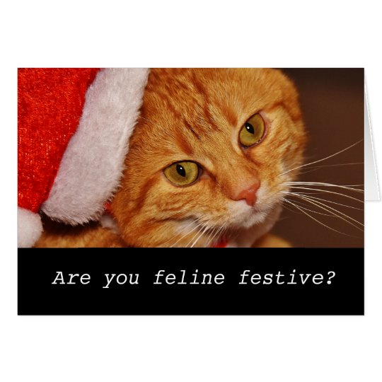 Funny personalised cat christmas card
