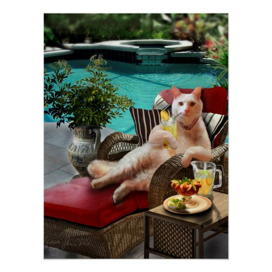 Funny Pet Poster Cat Luxury Vacation