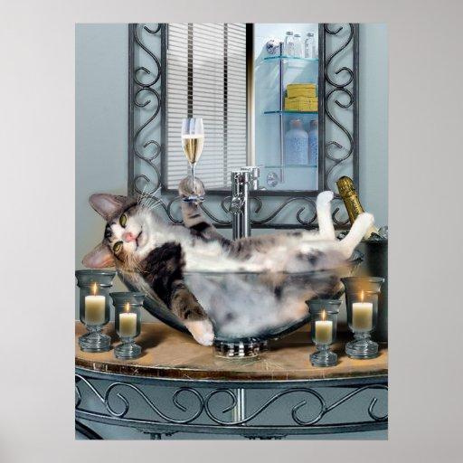 Funny Pet Poster Tipsy Kitty