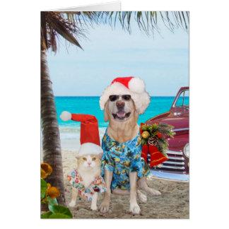 Funny Pets Hawaiian/Surfer Christmas Greeting Card