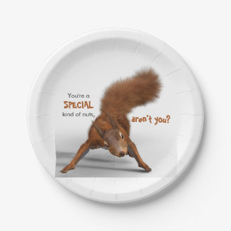 Funny Photo of Red Squirrel | Special Kind of Nuts Paper Plate