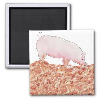 Funny pig in mud novelty art fridge magnet