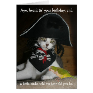 Funny Pirate Cat Greeting Card