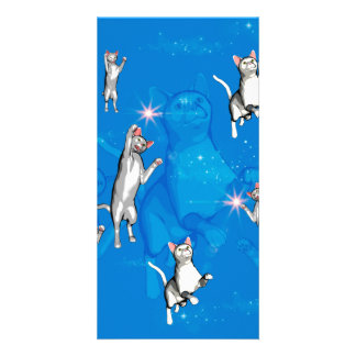 Funny playing cartoon cats personalized photo card
