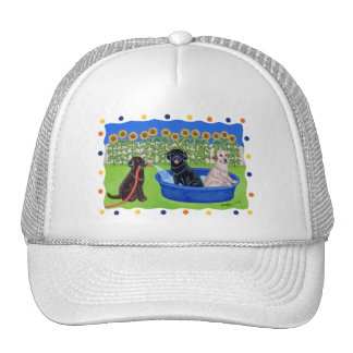 Funny Pool Party Labradors Mesh Hat
