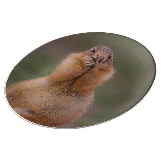 funny prairie dog porcelain plate