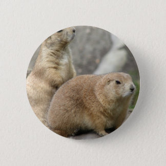 Funny Prairie Dogs Button