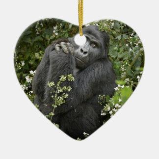 funny praying mountain gorilla :-) christmas ornament