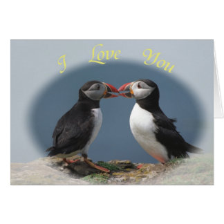 Funny puffins greeting card