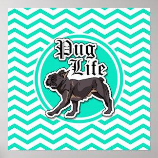 Funny Pug; Aqua Chevron Posters
