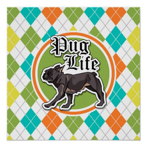 Funny Pug; Colorful Argyle Pattern Print