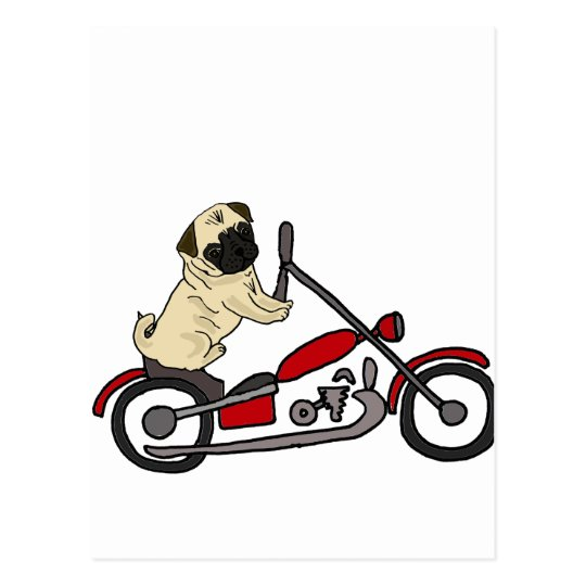 Funny Pug Dog Riding Motorcycle Art Postcard