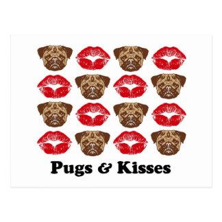 Funny Pug Postcard