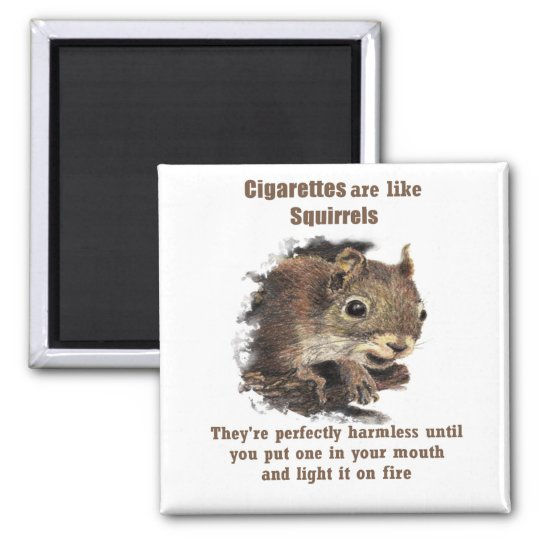 Funny Quit Smoking Motivational Quote Squirrel Square Magnet