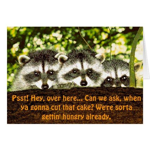 Funny Raccoon Birthday Card 2