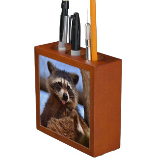 Funny Raccoon Sticking It's Tongue Out Desk Organiser