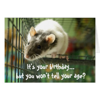 Funny rat photo birthday card