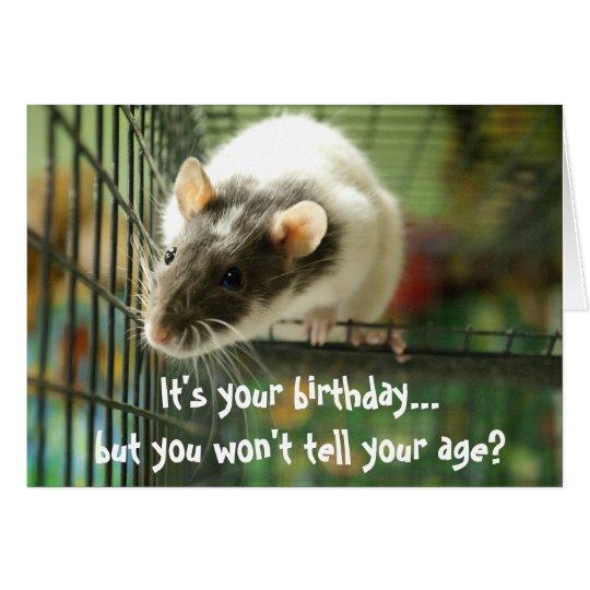 Funny rat photo birthday card