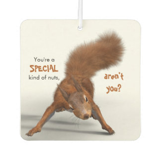 Funny Red Squirrel Photo | Special Kind of Nuts Car Air Freshener