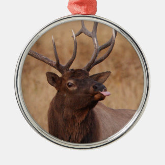funny reindeer christmas ornament