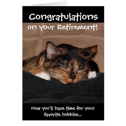 Funny Retirement Card, Napping Calico Cat