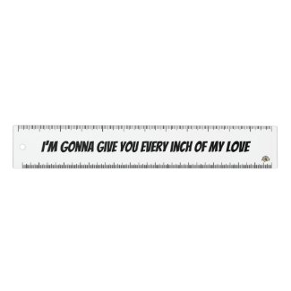 Funny rock lyrics ruler