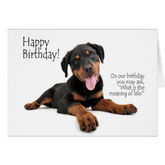 Funny Rottie Birthday Card