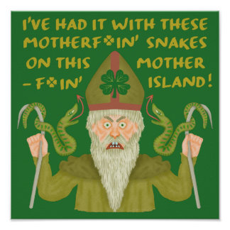 Funny Saint Patrick's Day Snakes Joke Green Irish Poster