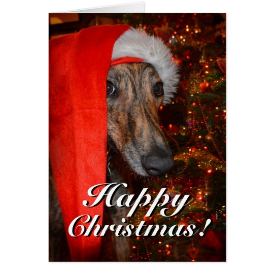 Funny Santa Dog Lurcher Greyhound Christmas Card