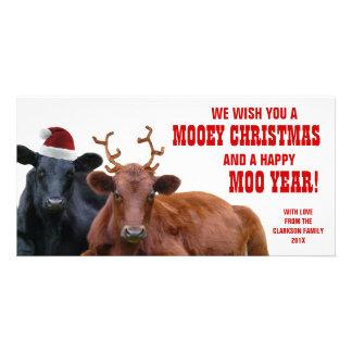 Funny Santa Reindeer Cows Christmas Beef Farm Photo Cards