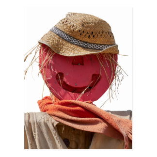 funny scarecrow in the farm postcard