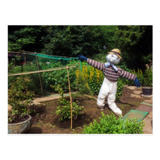 Funny scarecrow postcard