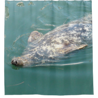 Funny Seal Floating on his Back Shower Curtain