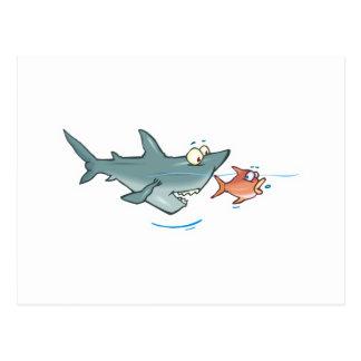 funny shark chasing fish postcard