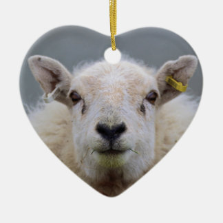 Funny Sheep Picture Christmas Ornament