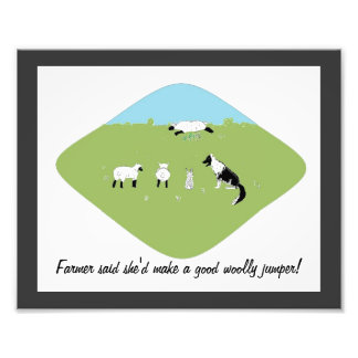 Funny Sheep picture Photo