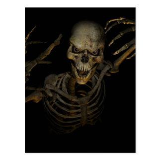 Funny Skeleton Postcard