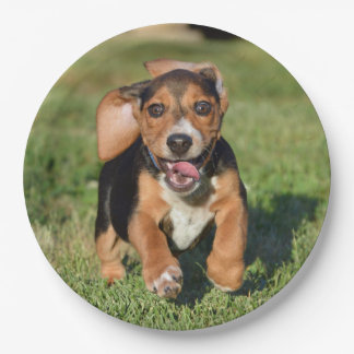 Funny Smiling Beagle Puppy Ears Flapping 9 Inch Paper Plate