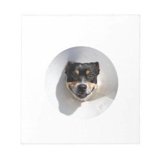 Funny smiling dog notepad