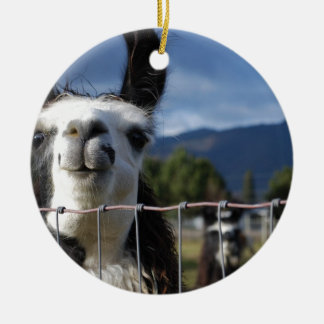 Funny Smiling Llama in Southern Oregon Round Ceramic Decoration