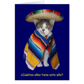 Funny Spanish Cat/Kitty Birthday Card